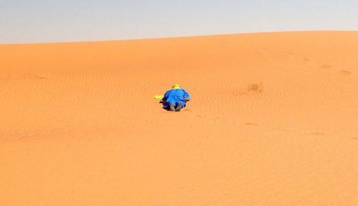 【海外生活】サハラ砂漠のラクダ使いに「写ルンです」を渡したら死にかけた話